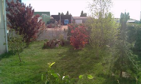 M264 activit d 39 lagage entretien jardins 85400 for Annonce entretien jardin