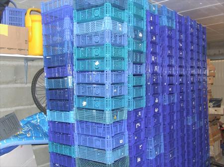 a saisir cagettes plastique bleu 30x40 49390 mouliherne maine et loire pays de la loire. Black Bedroom Furniture Sets. Home Design Ideas