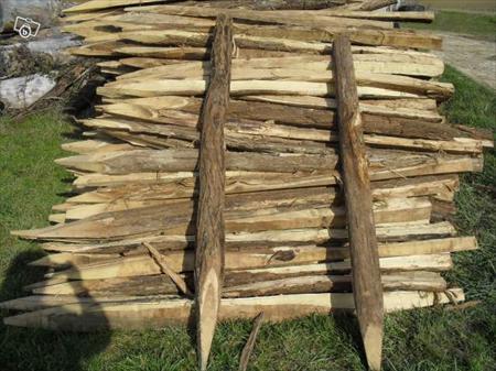 piquets pieux en acacia pour cloture acacia 2 71350 st loup de la salle saone et loire. Black Bedroom Furniture Sets. Home Design Ideas