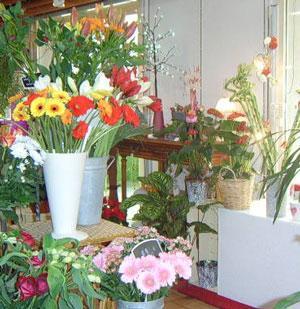 73 proche chambery fonds fleuriste 51000 73000 for Fleuriste proche